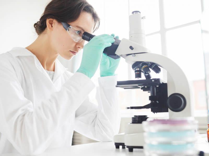 Ciências Biológicas – Licenciatura